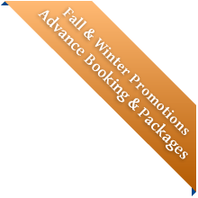 Fall & Winter Promotions & Packages
